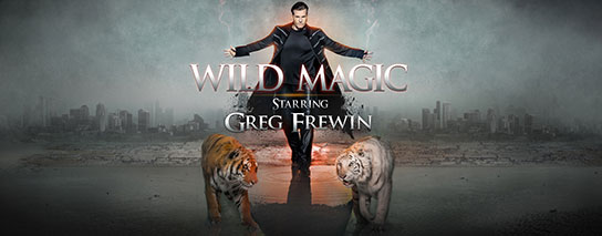 Wyndham Garden Niagara Falls Fallsview - Las Vegas Magic Show Package